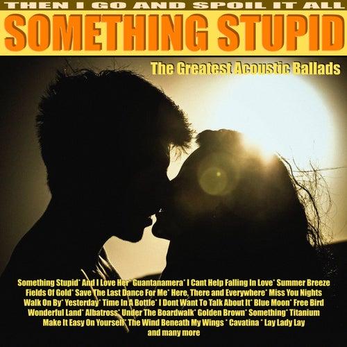 Something Stupid - My Acoustic Moods von Tim Barton