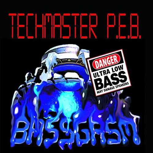 Bassgasm by Techmaster P.E.B.