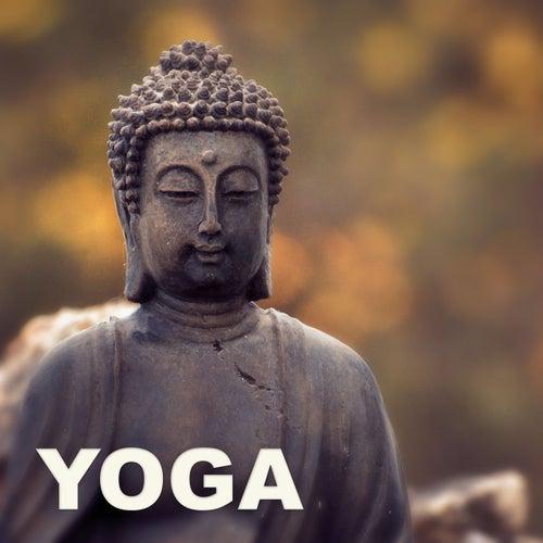 Yoga – Deep Meditation, Pure Relaxation, Music Therapy, Soft Music, Yoga Morning, Sun Salutation von Various Artists