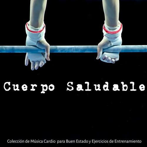 Cuerpo Saludable - Colección de Música Cardio para Buen Estado y Ejercicios de Entrenamiento, Musica Electro Drumstep Techno House de DJ Cardio