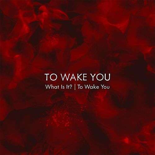 What Is It?/ To Wake You by To Wake You
