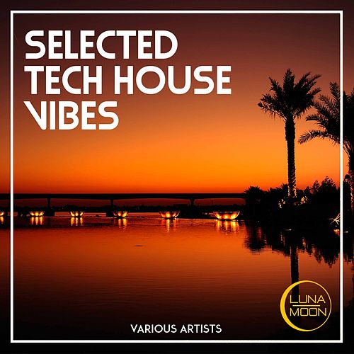 Selected Tech House Vibes von Various