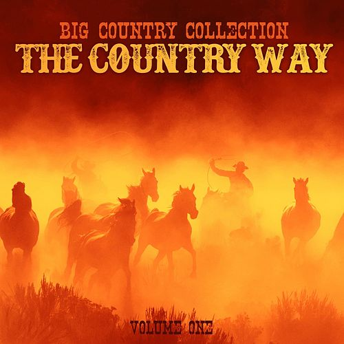 Big Country Collection: The Country Way, Vol. 1 by Various Artists