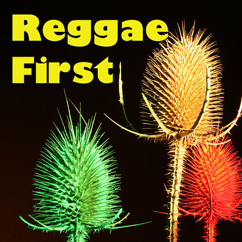 Reggae First by Various Artists