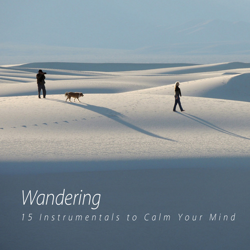 Wandering by Various Artists
