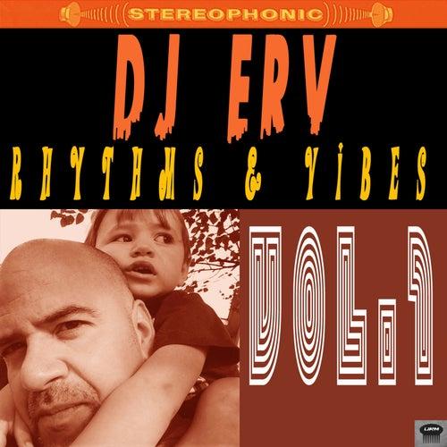 Rhythms & Vibes, Vol. 1 by DJ Erv