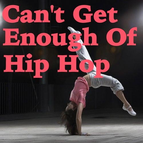 Can't Get Enough Of Hip Hop de Various Artists
