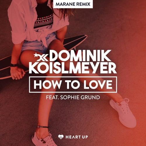 How to Love (Marane Remix) von Dominik Koislmeyer