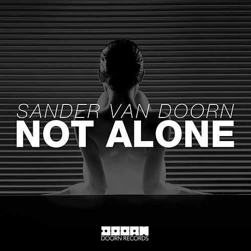 Not Alone de Sander Van Doorn