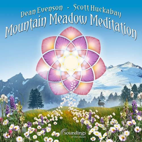 Mountain Meadow Meditation de Various Artists