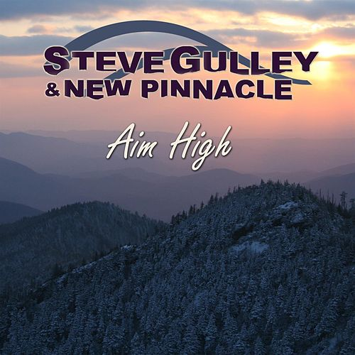 Aim High by Steve Gulley