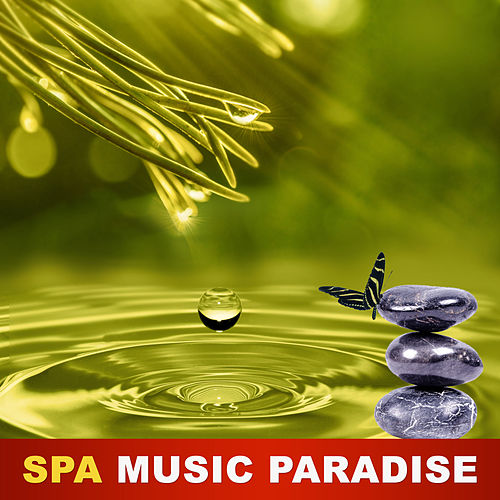 Spa Music Paradise - Music Therapy, Nature Sounds, Deep Meditation, Spa Sounds, Ambient Dreaming by Spa Music (1)