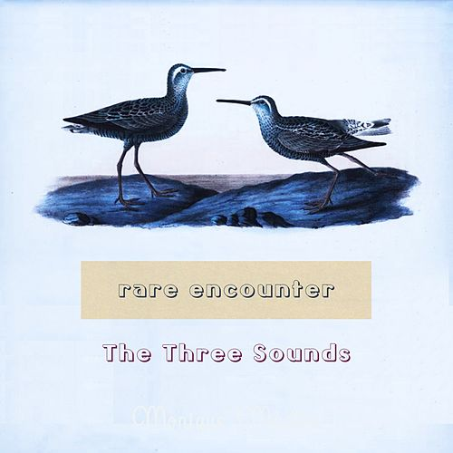 Rare Encounter by The Three Sounds