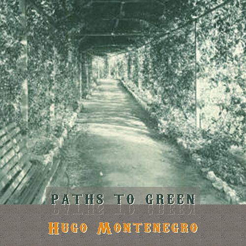 Path To Green by Hugo Montenegro