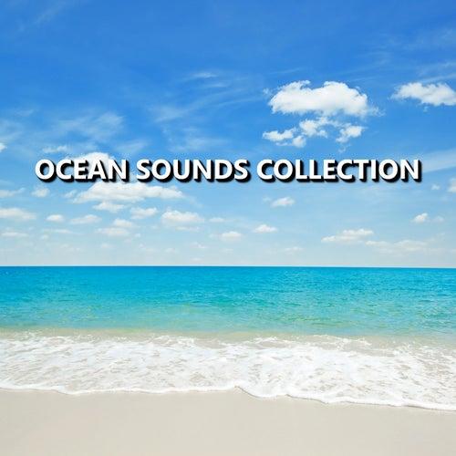 Ocean Sounds Collection de Ocean Sounds Collection (1)