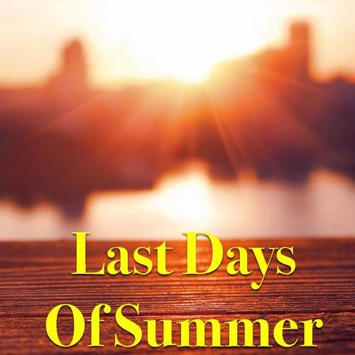 Last Days Of Summer von Various Artists