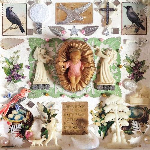 Wings di Jackie Oates