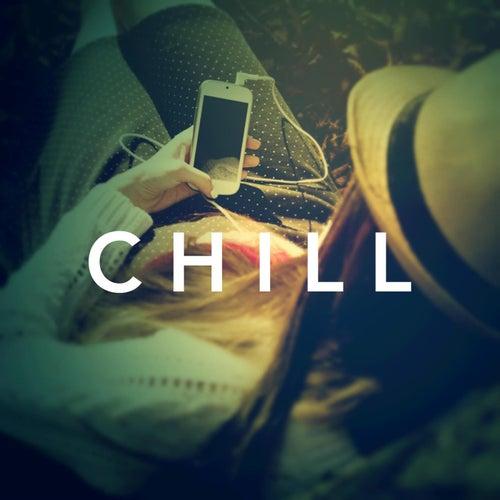 Chill von Various Artists
