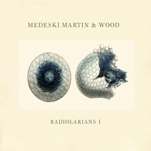 Radiolarians 1 de Medeski, Martin and Wood
