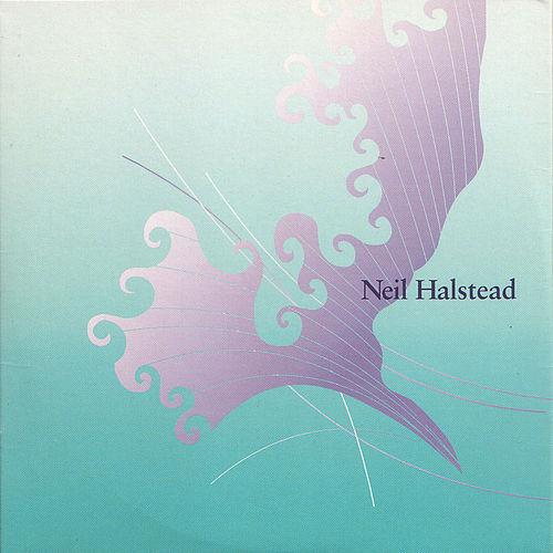 Two Stones In My Pocket de Neil Halstead