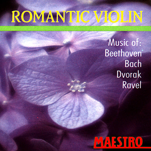 Romantic Violin: Music Of Beethoven, Bach, Dvorak, Ravel von Ivan Zenalty