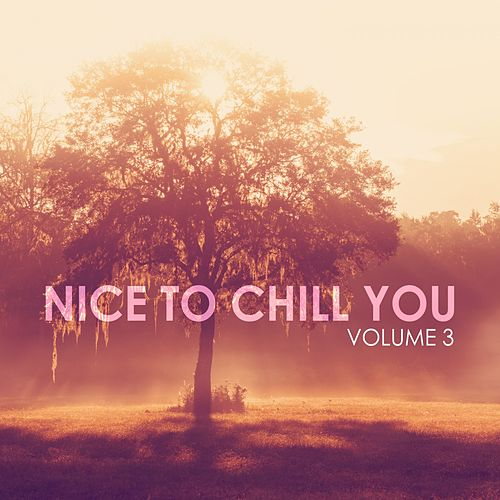 Nice to Chill You, Vol. 3 von Various Artists