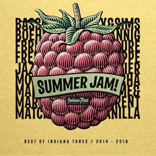 Summer Jam! (Best of 2014 - 2016) von Various Artists