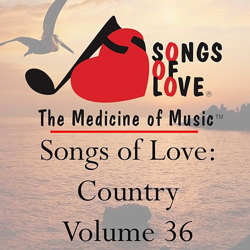 Songs of Love: Country, Vol. 36 von Various Artists