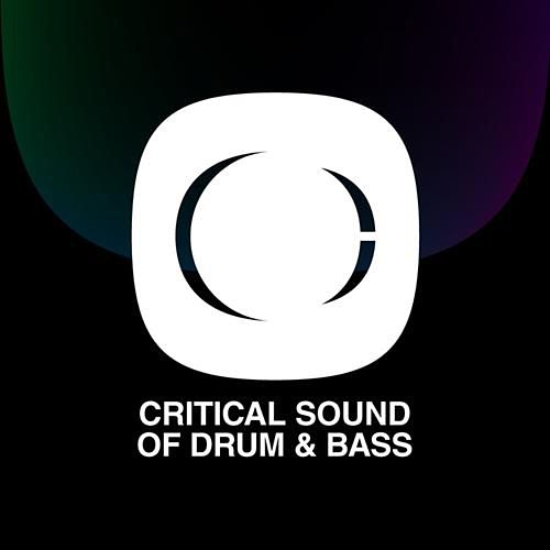 Critical Sound Of Drum And Bass von Various Artists