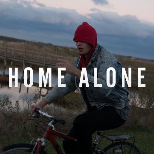 Home Alone von Ansel Elgort