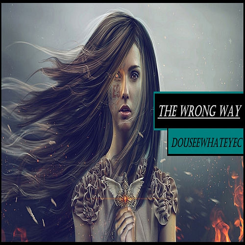 The Wrong Way by DoUSeeWhatEyec