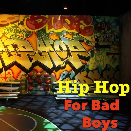 Hip Hop For Bad Boys de Various Artists