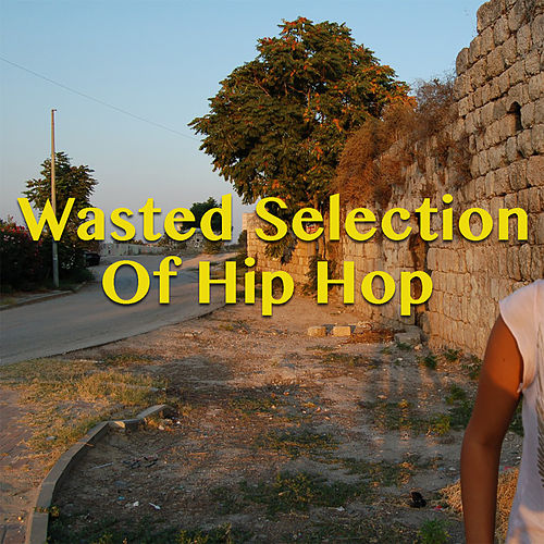 Wasted Selection Of Hip Hop by Various Artists