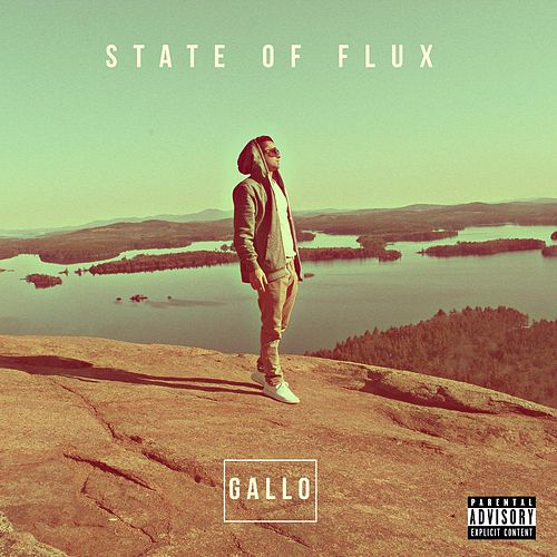 State of Flux by Gallo