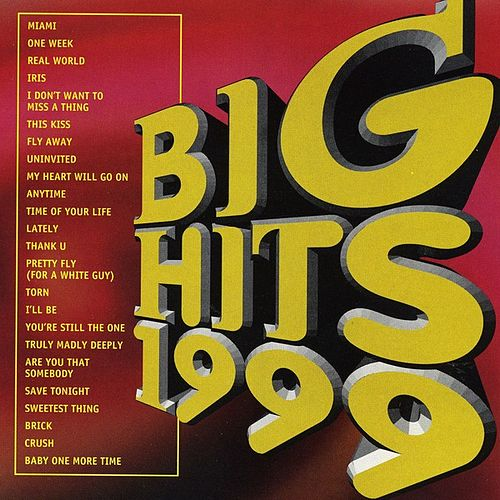 Big Hits 1999 van Various Artists