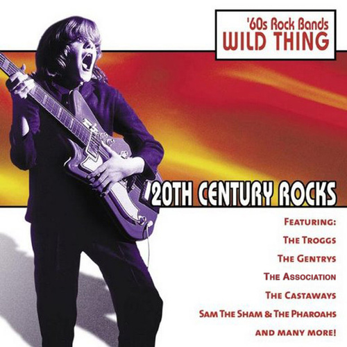 20th Century Rocks: 60's Rock Bands - Wild Thing von Various Artists