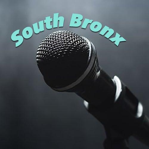 South Bronx de Various Artists