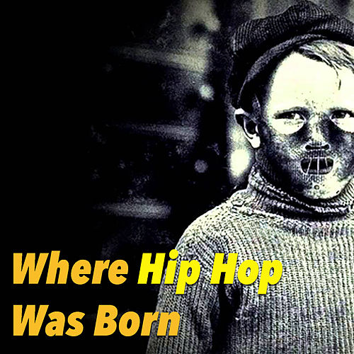 Where Hip Hop Was Born by Various Artists