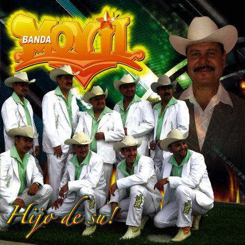 Hijo De Su! by Banda Movil