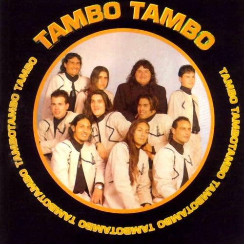 Tambo Tambo de Tambó Tambó