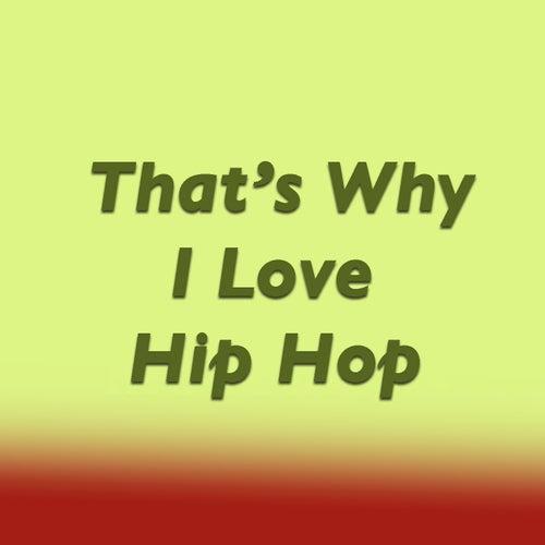 That's Why I Love Hip Hop de Various Artists