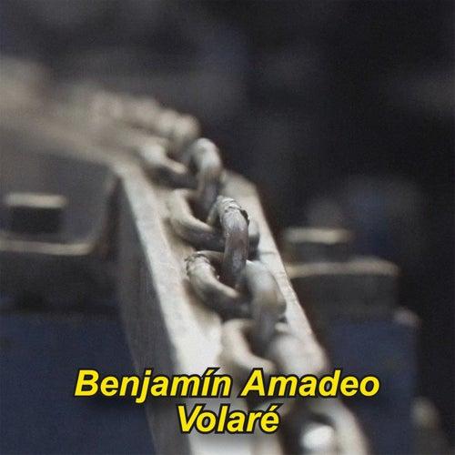 Volaré by Benjamín Amadeo