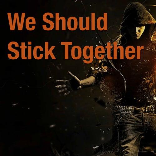 We Should Stick Together de Various Artists