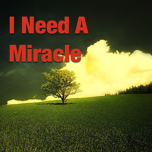 I Need A Miracle by Various Artists