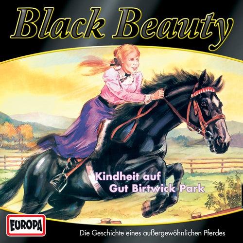 01/Kindheit auf Gut Birtwick Park von Black Beauty