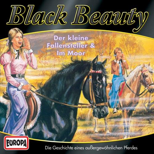 04/Black Beauty im Moor von Black Beauty
