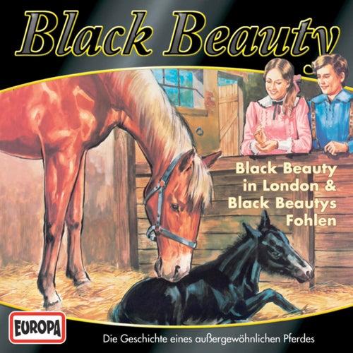 03/Black Beauty in London/Black Beautys Fohlen von Black Beauty