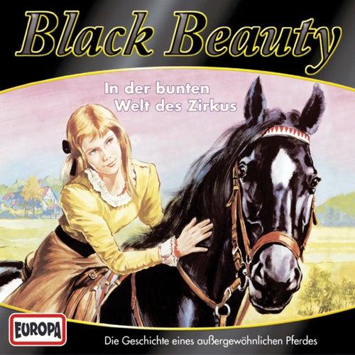 02/In der bunten Welt des Zirkus von Black Beauty