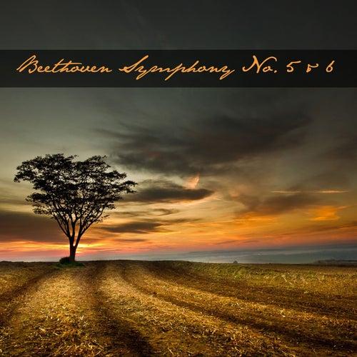 Beethoven Symphony No. 5 & 6 von Boston Symphony Orchestra