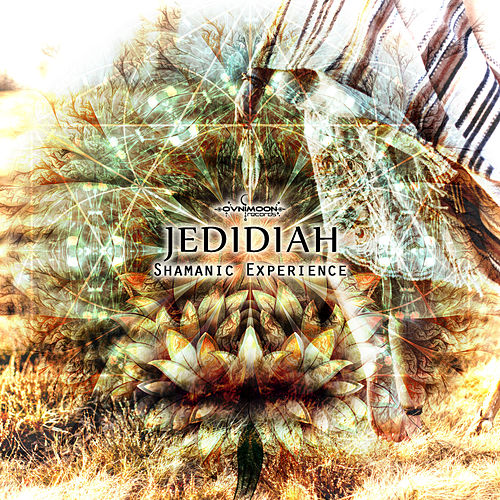 Shamanic Experience by Jedidiah